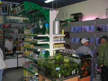 Przeniesienie sklepu z ul. Warszawskiej na ul. Sobieskiego w Legionowie (4)