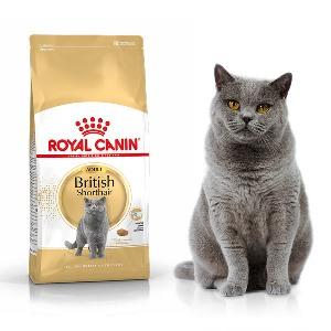 pokarm dla kotów i psów Legionowo nowy Dwór Mazowiecki ZooNemo sklepy (4)