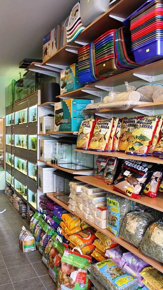 sklep zoologiczny ZooNemo Legionowo Nowy Dwór Mazoiwecki terrarystyka, akwarystyka, psy, koty, wyposażenie , pokarm (11)