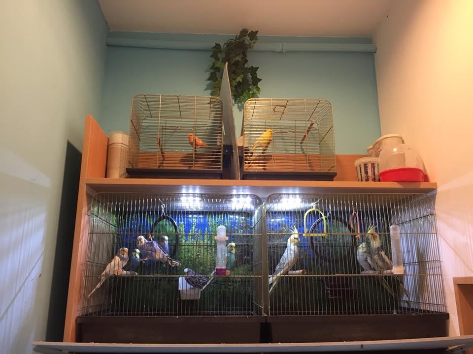 sklep zoologiczny ZooNemo Nowy Dwór Mazowiecki