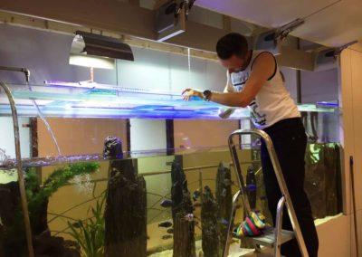 Sieć sklepów ZooLogicznych ZooNemo Legionowo Nowy Dwór Mazowiecki ryby, rośliny, psy, koty (39)