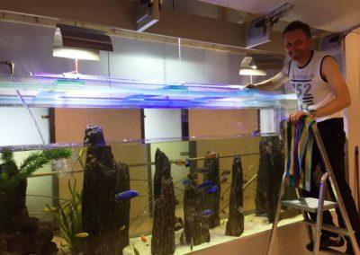 Sieć sklepów ZooLogicznych ZooNemo Legionowo Nowy Dwór Mazowiecki ryby, rośliny, psy, koty (40)