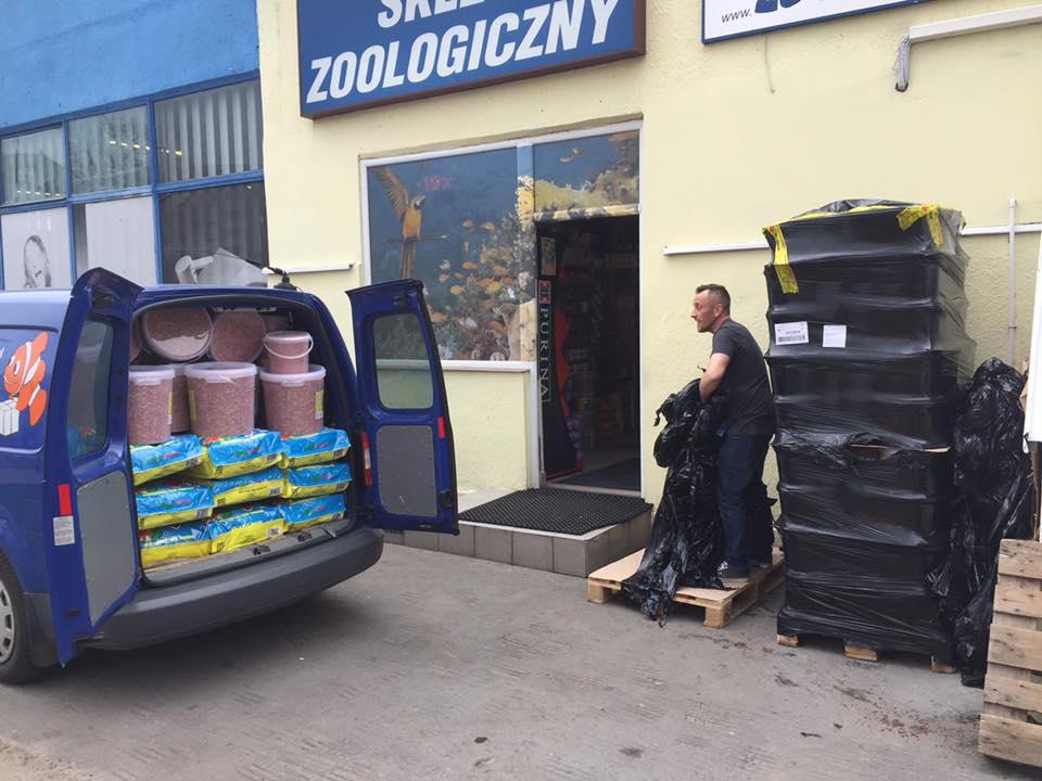 Sieć sklepów ZooLogicznych ZooNemo Legionowo Nowy Dwór Mazowiecki ryby, rośliny, psy, koty (9)