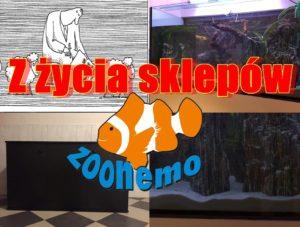 Urządzanie akwarium 500L, szafki pod akwaria na zamówienie, inwentaryzacja w naszych sklepach