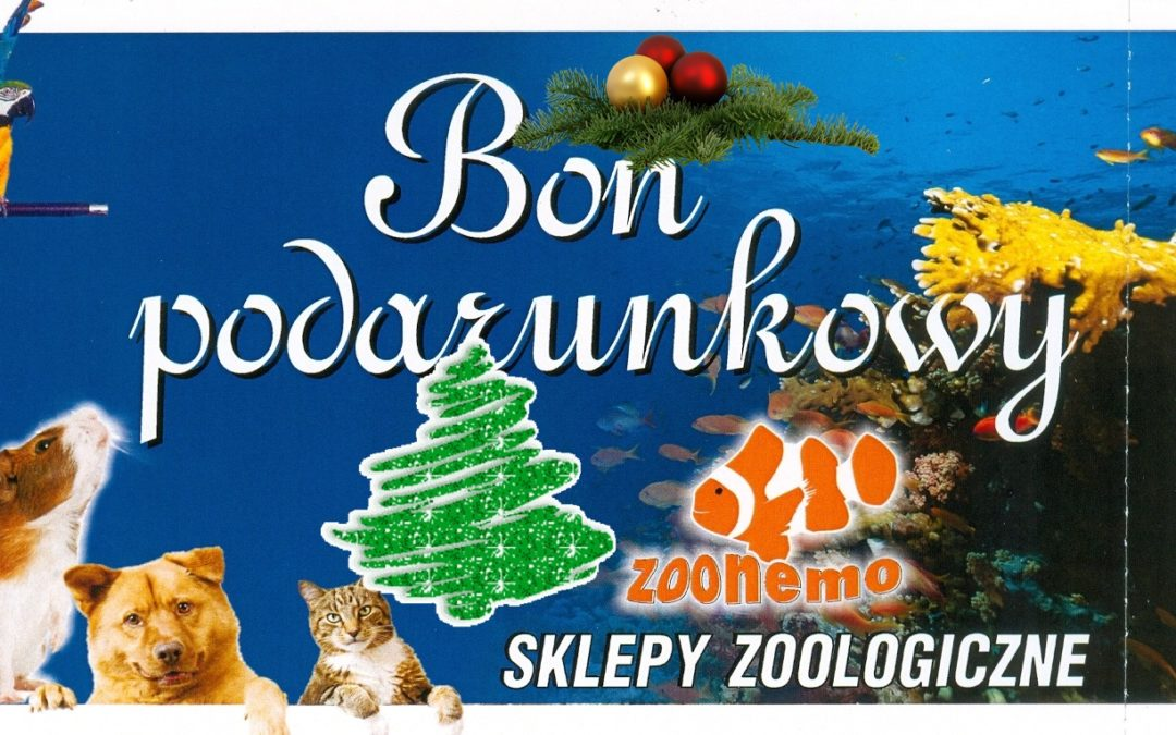 Bony podarunkowe w sklepach zoologicznych ZooNemo