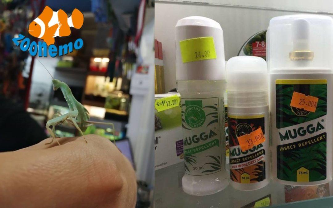 """Modliszki """"Mantis religiosa"""" w naszych sklepach. Zadbajmy o nasze zdrowie, preparaty Mugga"""