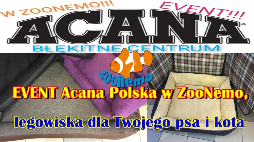 EVENT Acana Polska w ZooNemo, legowiska dla Twojego psa i kota