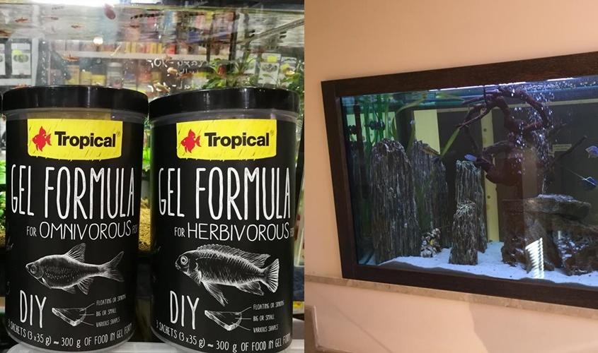 Nowa karma firmy Tropical w żelu w sklepach ZooNemo. Jedno z naszych akwariów, po zakończeniu prac