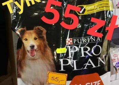 karma dla psa ZooNemo Legionowo Nowy Dwór Mazowiecki (1)