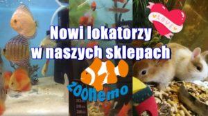 Nowi lokatorzy w sklepach zoologicznych ZooNemo!