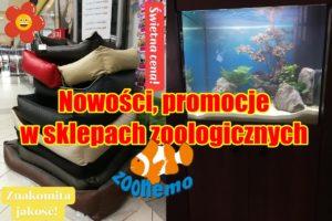 Nowości, promocje w sklepach zoologicznych ZooNemo