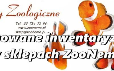 Planowane inwentaryzacje w sklepach ZooNemo