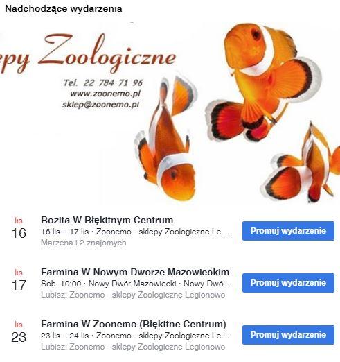 ZooNemo eventy listopad