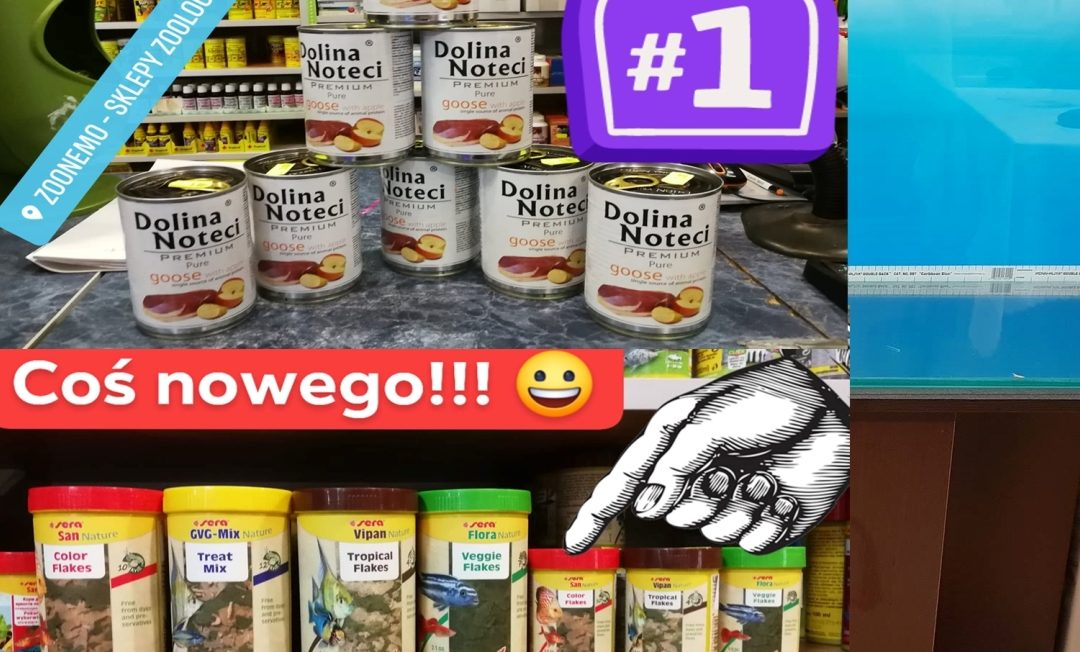 Promocja na karmy dla psów w sklepach zoologicznych ZooNemo. Nowy pokarm dla ryb akwariowych Sera