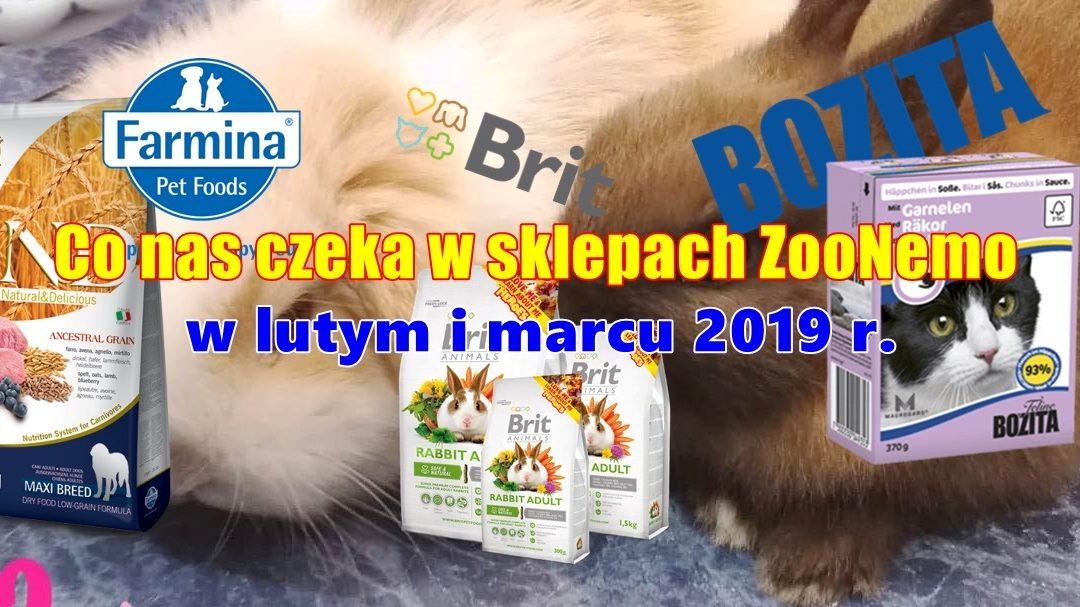 Co nas czeka w sklepach ZooNemo w lutym i marcu 2019 r.