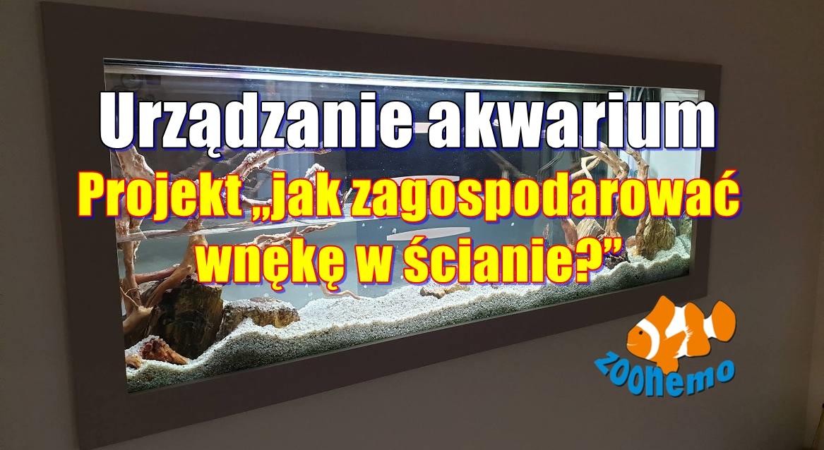 """Urządzanie akwarium. Projekt """"jak zagospodarować wnękę w ścianie"""" Akwarium na zamówienie"""