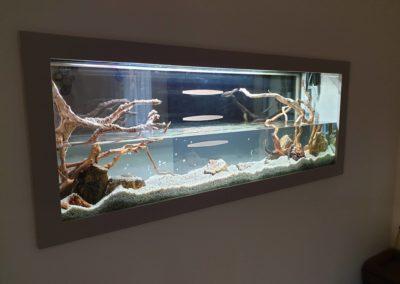 Urządzanie zbiorników wodnych akwaria na zamówienie ZooNemo 1 (2)