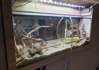 Urządzanie zbiorników wodnych akwaria na zamówienie ZooNemo 1 (6)