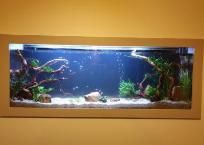Urządzanie zbiorników wodnych akwaria na zamówienie ZooNemo 2 (4)