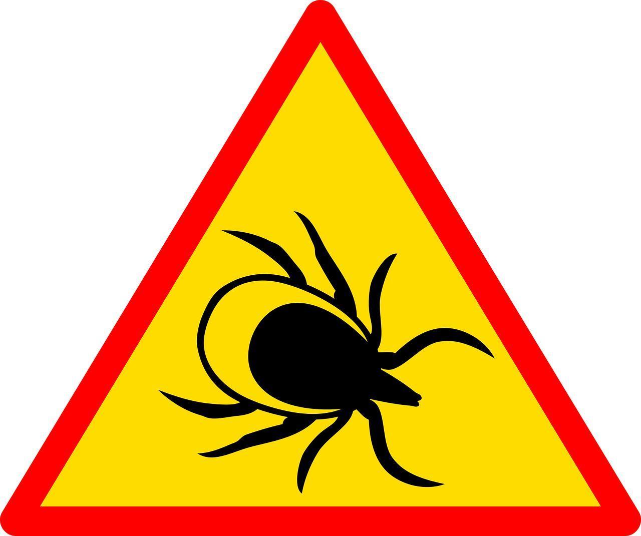 Ochrona twojego pupila przed kleszczami ZooNemo Legionowo Nowy Dwór Mazowiecki