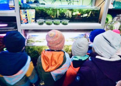Odwiedziny małych akwarystów w sklepie zoologicznym ZooNemo Legionowo Błękitne Centrum (2)