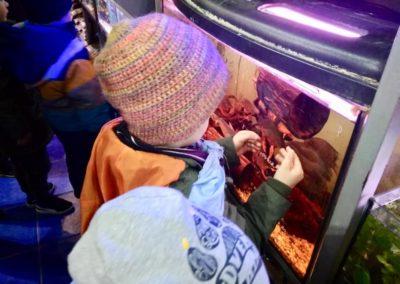 Odwiedziny małych akwarystów w sklepie zoologicznym ZooNemo Legionowo Błękitne Centrum (5)