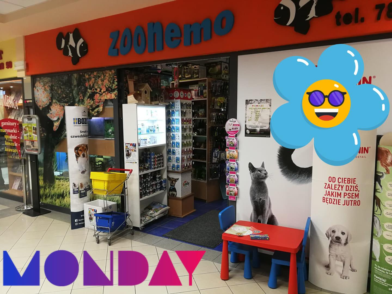 WIOSNA sklepy zoologiczne ZooNemo