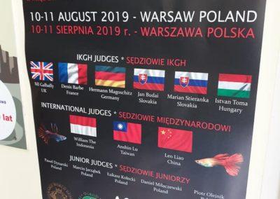 Wystawa GUPIKÓW – Warszawskie ZOO sklepy zoologiczne ZooNemo (15)