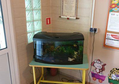 zmiana akwarium w przedszkolu miejski Legionowo ZooNemo 1