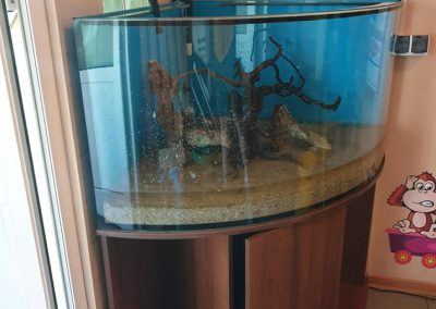 zmiana akwarium w przedszkolu miejski Legionowo ZooNemo 4