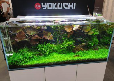targi Pet Fair w Łodzi ZooNemo (5)