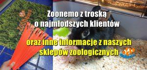 Zoonemo z troską o najmłodszych klientów oraz inne informacje z naszych sklepów zoologicznych