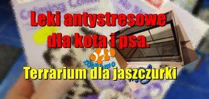 Leki antystresowe dla kota i psa. Terrarium dla jaszczurki