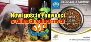 Nowi goście i nowości w sklepach zoologicznych ZooNemo