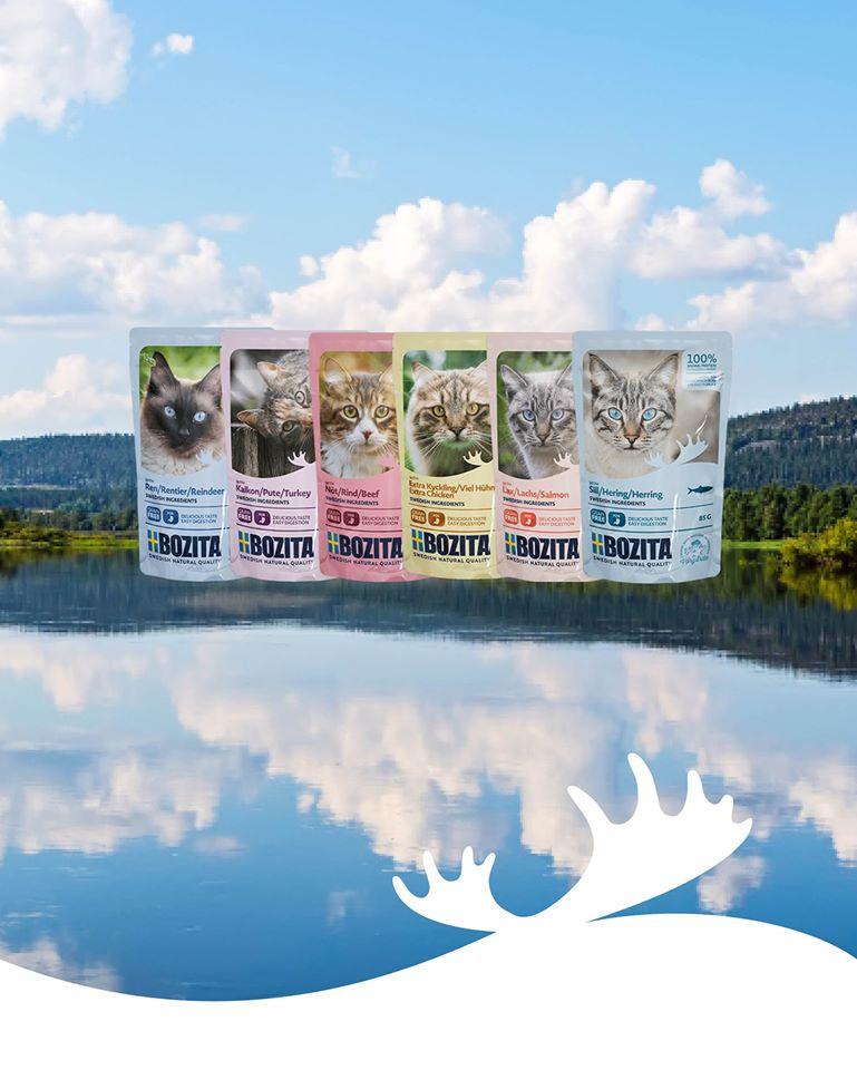 mokra karma dla kotów bozita Legionowo Nowy Dwór Mazowiecki ZooNemo